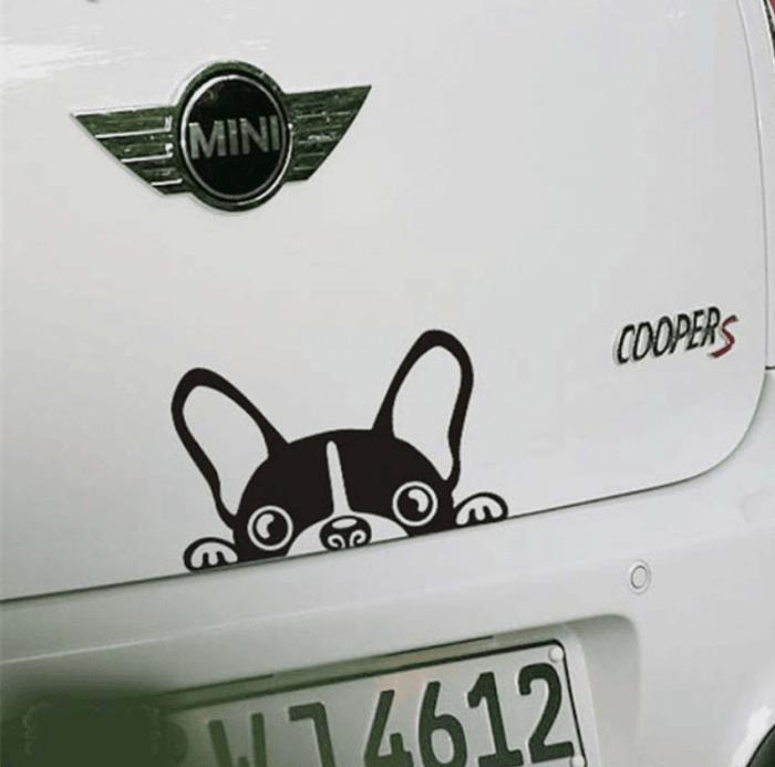 Pegatinas-personalizadas-coches